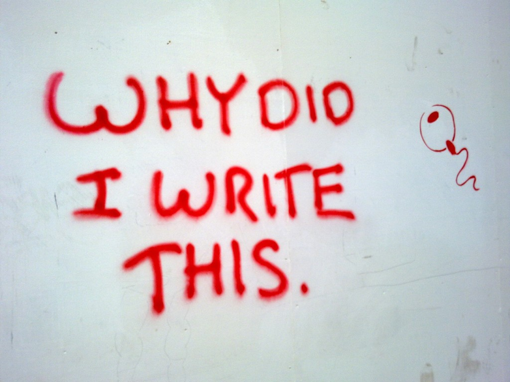 Graffiti on a hoarding with the words Why Did I Write This?